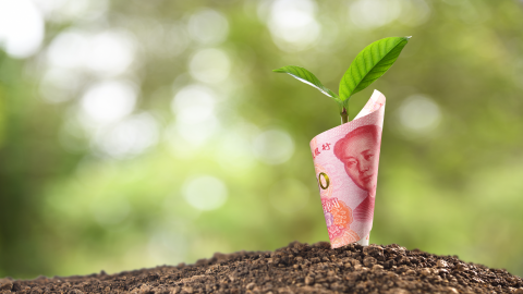 Investment Opportunities in RMB and Prospect of Green Bonds