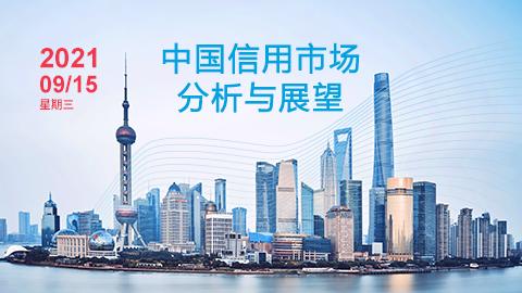 中国信用市场分析与展望